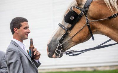 Best Wedding Photos of 2018 Part 2