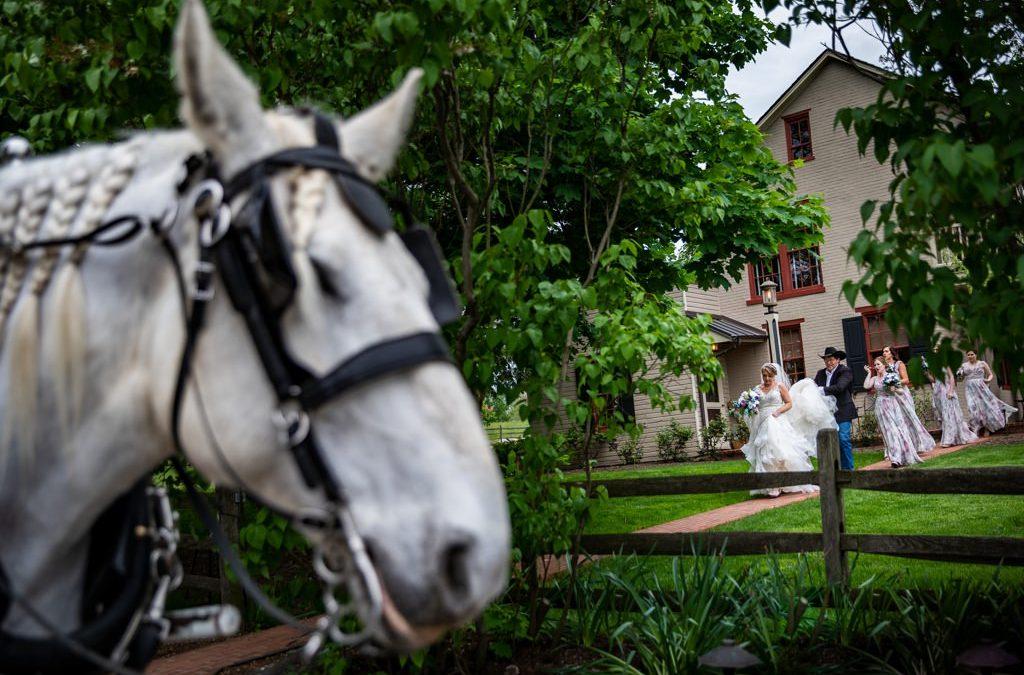 Kaylin and Ben at Ironstone Ranch | Elizabethtown, PA