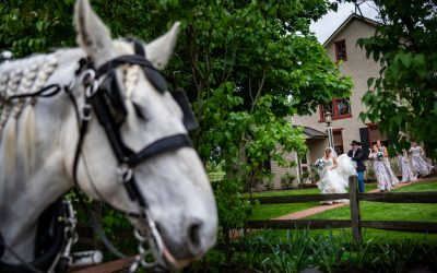 Kaylin and Ben at Ironstone Ranch | Elizabethtown, PA